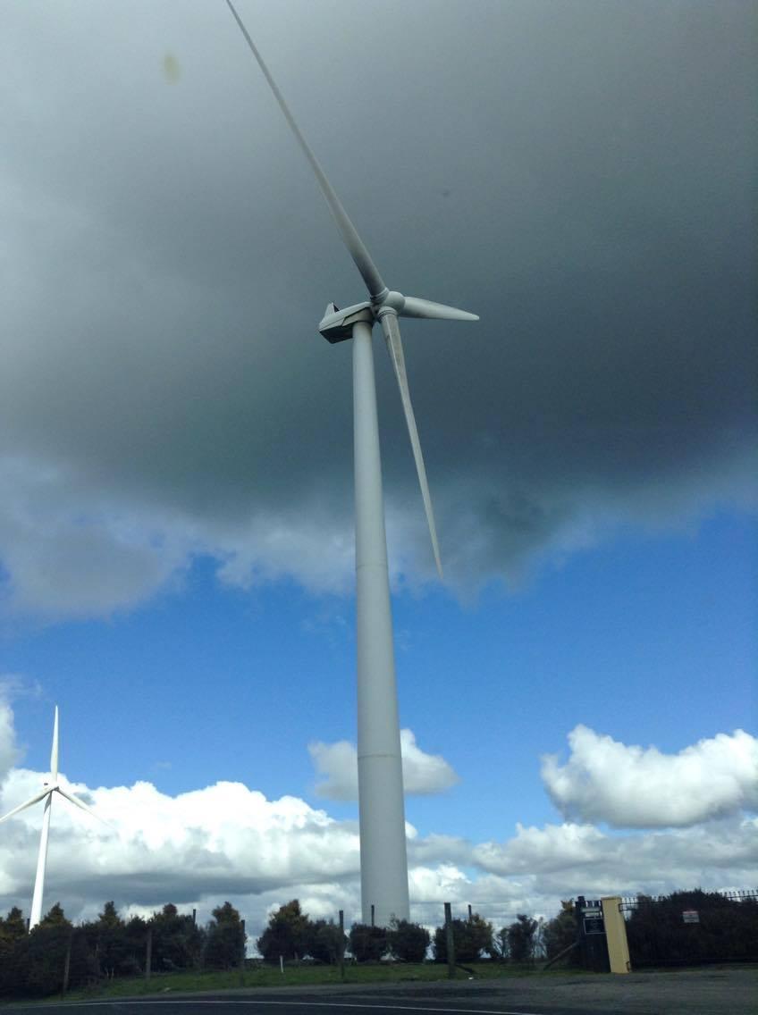パーマストンノースの手前にあった風力発電所。遠くから眺める風車の群れも壮観でしたが、真下から見上げる風車の大きさもド迫力でした。
