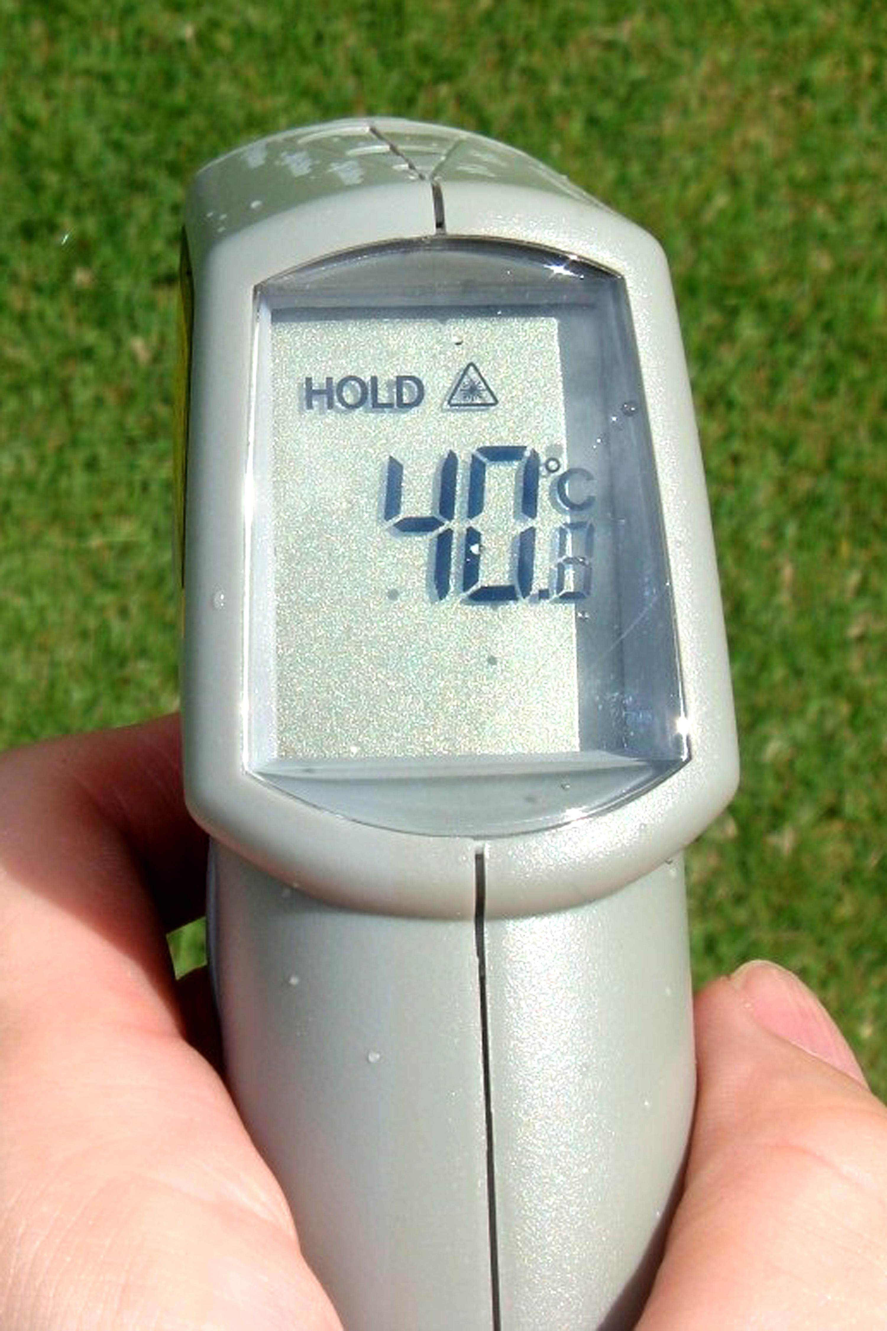 直射日光下の芝の上は40・8度を記録