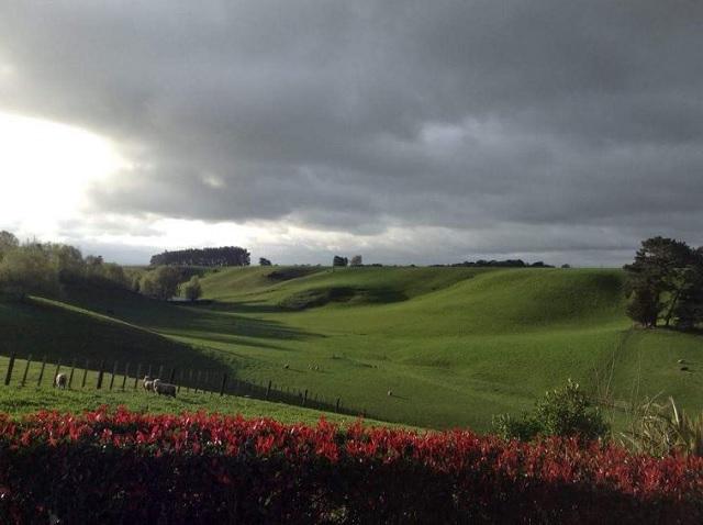 コテージの窓からは、こんな景色が広がります。ね、大草原でしょ!?。青空が見えたら、もっと綺麗だったでしょうね。